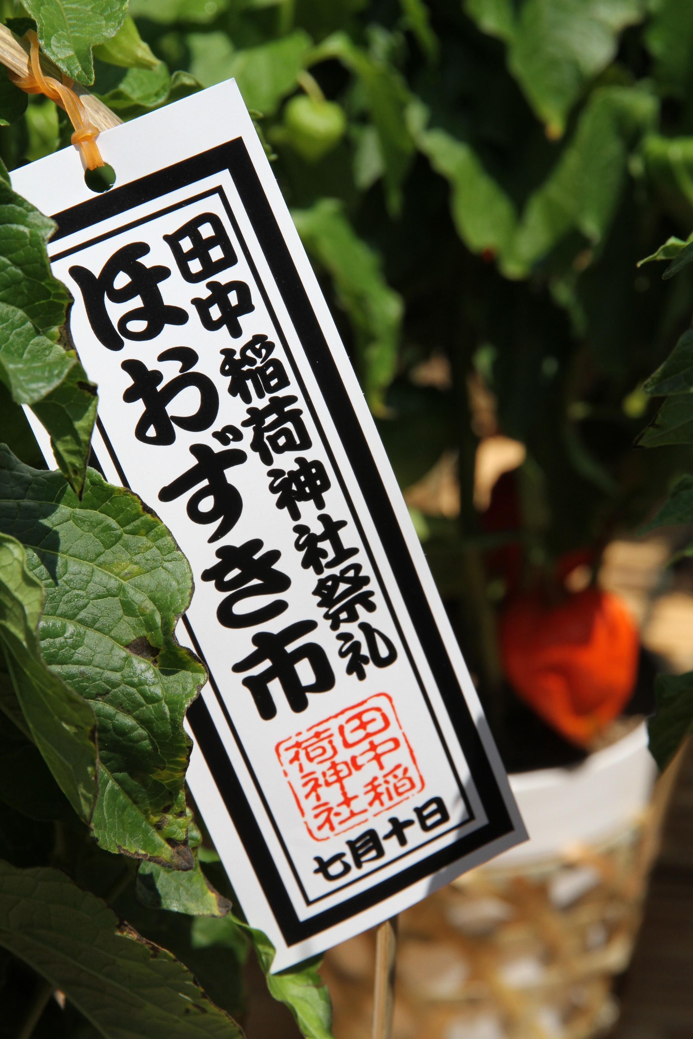 会津 (2)